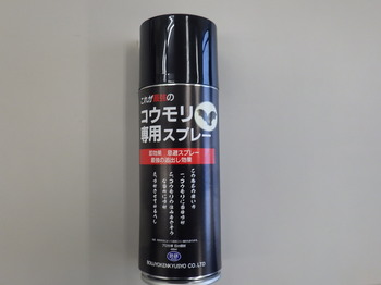 RIMG5002.JPG